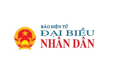 dai-bieu-nhan-dan